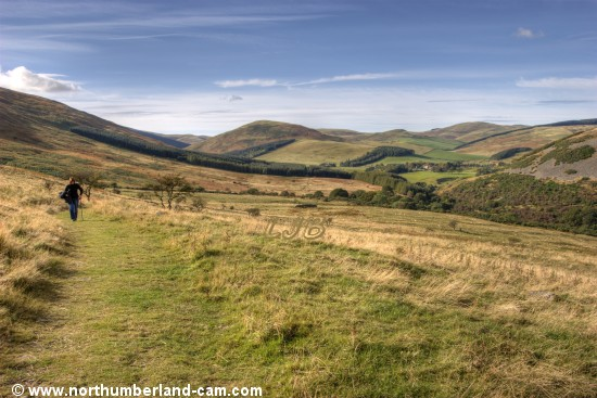 Northumberland - Elsdon Burn - Cheviot Hills Walks